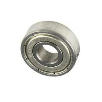 6203zz Sealed Deep Groove Ball Bearing/Bearing/Motorcycle Parts